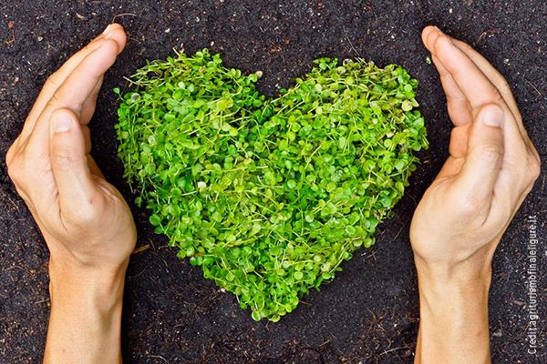 L'importanza della sostenibilità ambientale